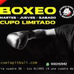 PUBLICIDAD DE BOXEO
